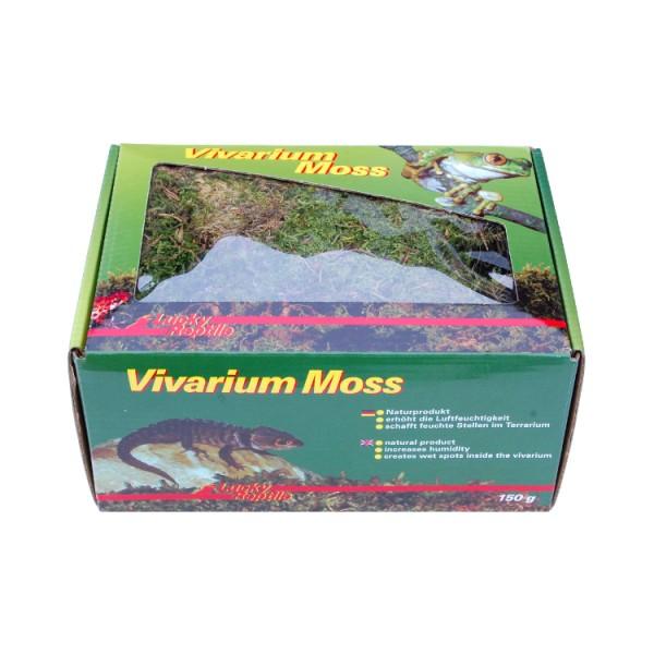 Lucky Reptile Vivarium Moos (150 g)