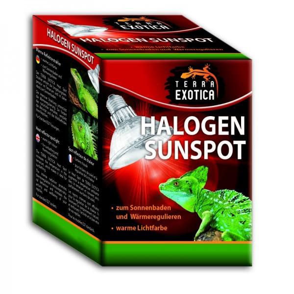 Terra Exotica Halogen Sunspot - Spotstrahler