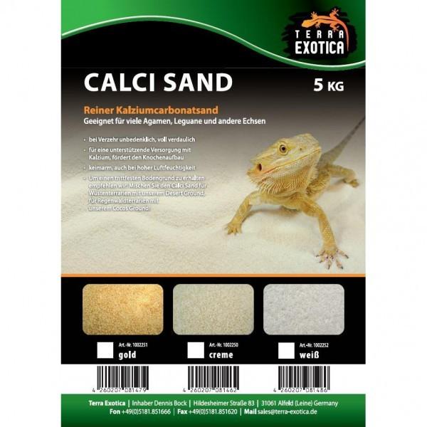 Terra Exotica Calci Sand - creme, gold o. weiß