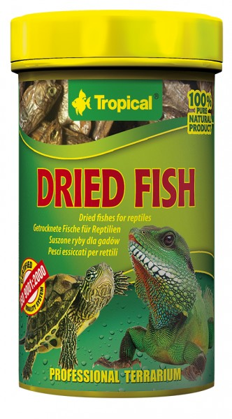 Tropical Dried Fish (getrockneter Fisch)