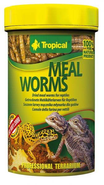 Tropical Mealworms (getrocknete Mehlwürmer)