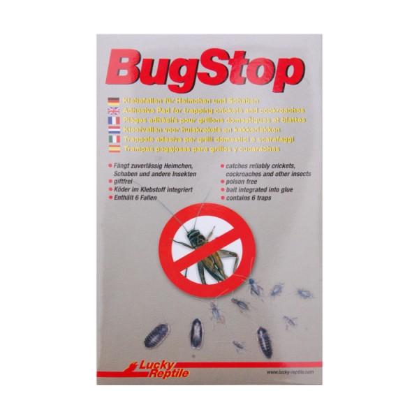Lucky Reptile Bug Stop Kaufen Klebefallen Fur Heimchen Und Schaben
