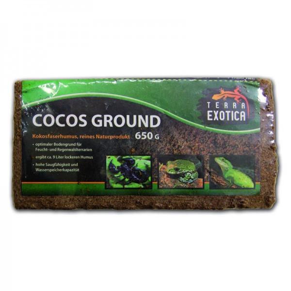 Terra Exotica Cocos Ground - Kokosfaserhumus (650 g)